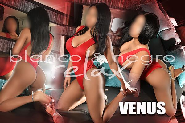 presentacion Venus Collage Morena
