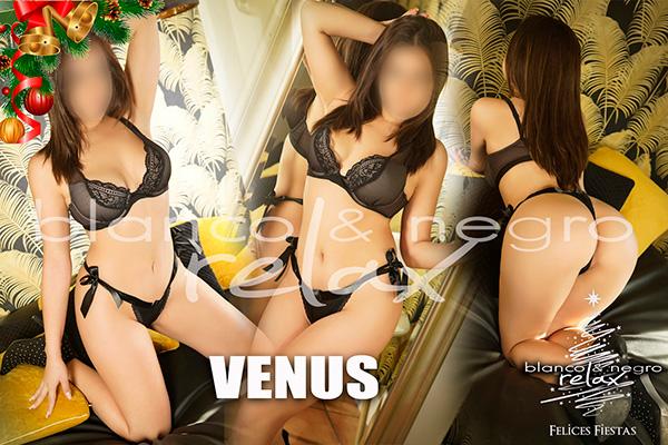 Presentacion Venus Navidad